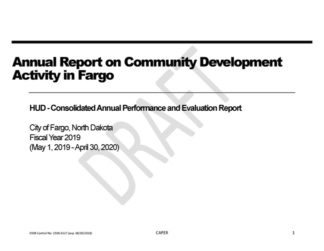 2019 Consolidated Annual Performance and Evaluation Report (CAPER) - DRAFT