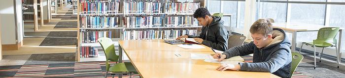 Fargo Library