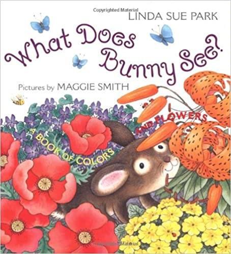 What Does Bunny See? book cover